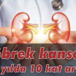 Böbrek kanseri 10 yılda 10 kat arttı!