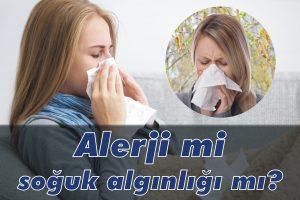 Alerji mi, soğuk algınlığı mı?