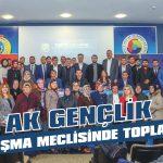 AK Gençlik danışma meclisinde toplandı