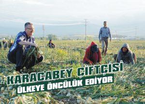 Karacabey çiftçisi ülkeye öncülük ediyor