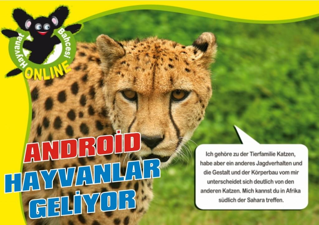 Android hayvanlar geliyor