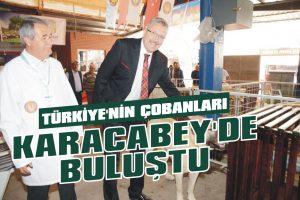 Türkiye'nin çobanları Karacabey'de buluştu