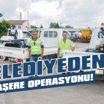 Belediyeden haşere operasyonu!