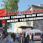 Hangi terörün belini kırdınız AKP'li vekil!