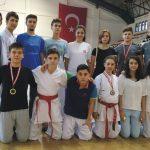 Karatecilerden 5 madalya