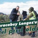 Karacabey Longoz'u pırıl pırıl oldu