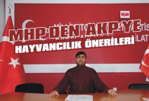 MHP'den AKP'ye hayvancılık önerileri