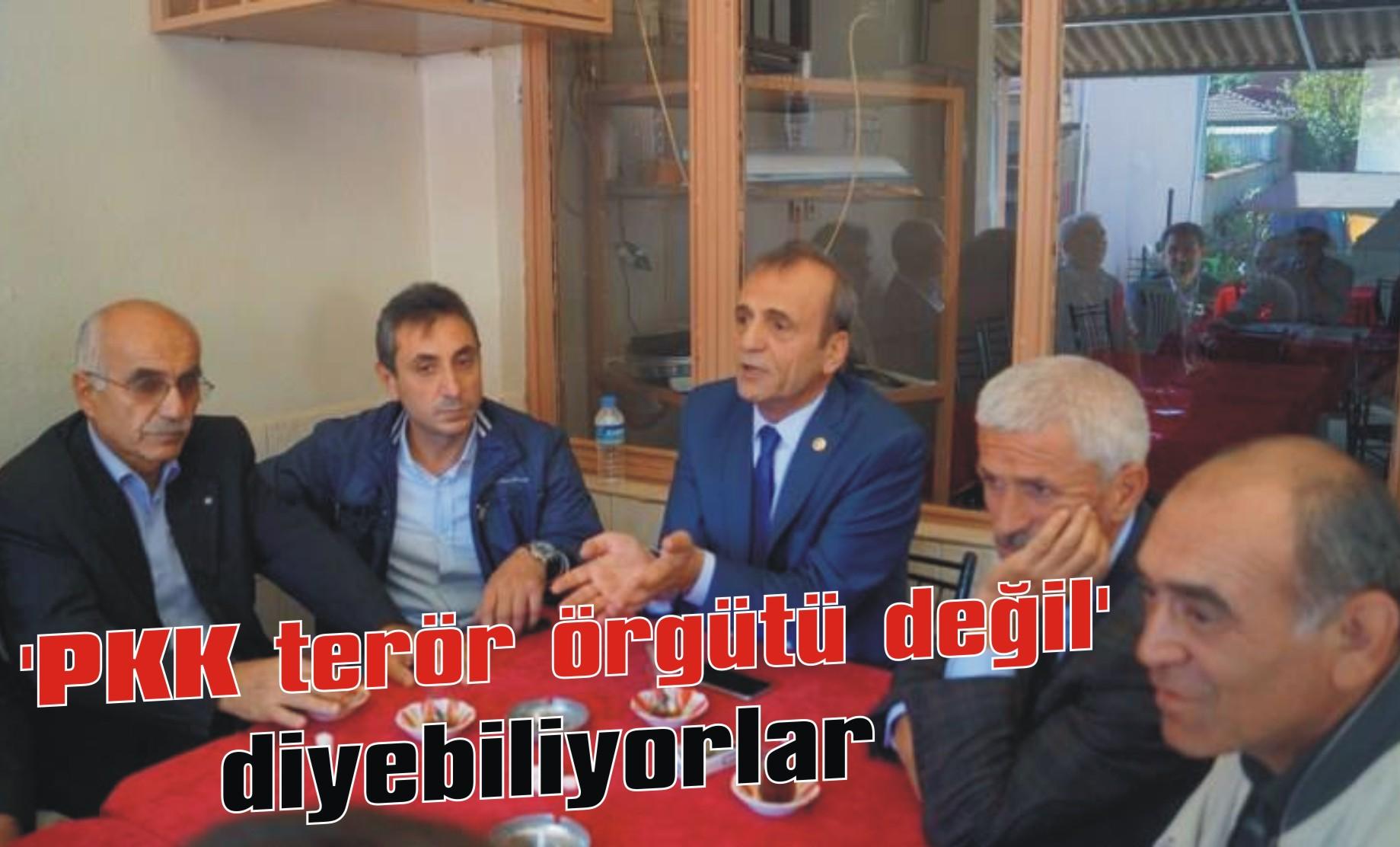 'PKK terör örgütü değil' diyebiliyorlar