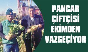 Pancar çiftçisi ekimden vazgeçiyor