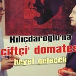 Kılıçdaroğlu'na 'çiftçi' domatesi